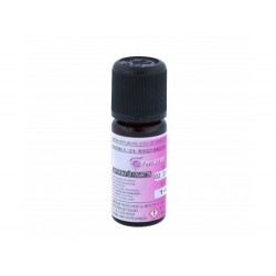 Twisted Flavor - Twisted Aroma - Lemon Drizzle Cake 10ml